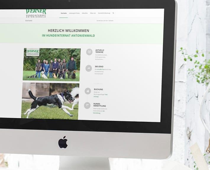 Hundeinternat Responsive Webdesign Osnabrück