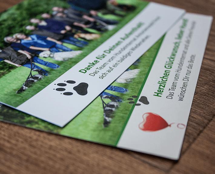 Postkarte drucken lassen Osnabrück Hundeinternat Antonienwald