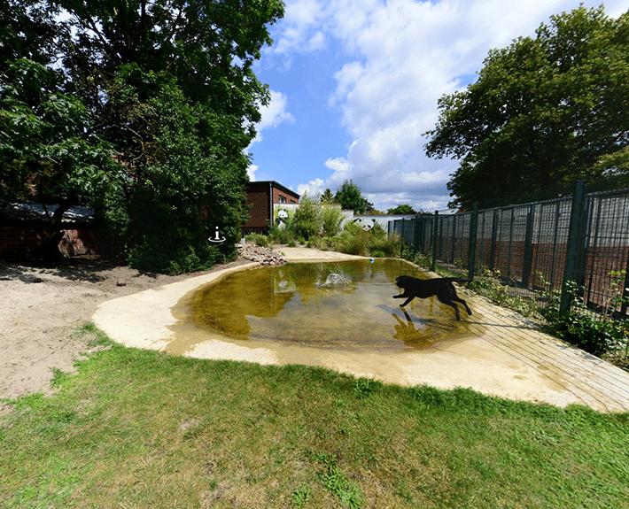 Virtuelle Tour 360 Osnabrück Hundeinternat Antonienwald