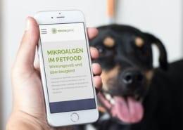Unternehmen für Microalgen Responsive Webdesign Werbeagentur Osnabrück