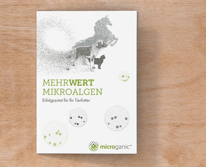 Unternehmen für Microalgen Folder Flyergestaltung Osnabrück