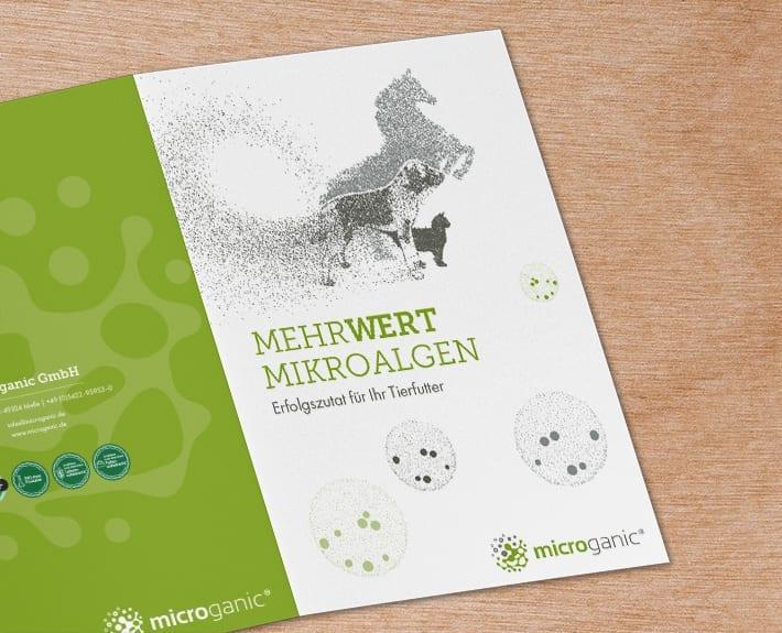 Folder Flyergestaltung Microalgen
