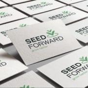 Logo SeedForward